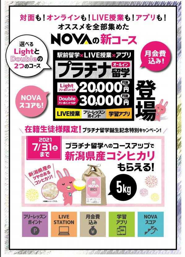 5月末まで5000円off!✨プラチナ留学✨ | 駅前留学NOVA【公式】スクールブログ