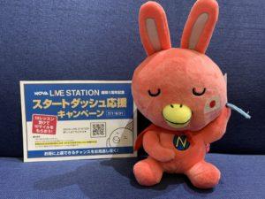 NOVA LIVE STATION開局1周年記念キャンペーン実施中!🐰