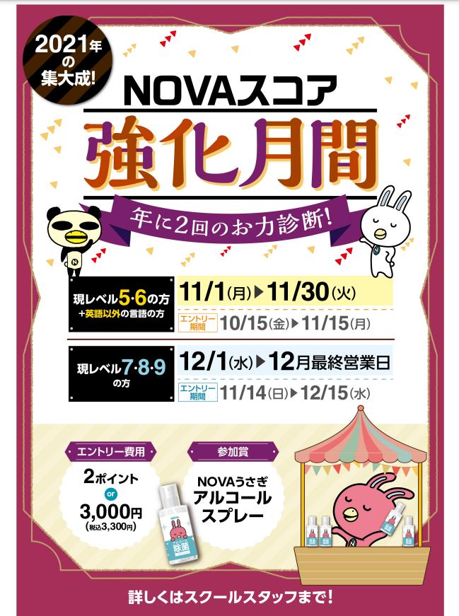 【英語上達には必須】NOVAから定期健診のお知らせ👀!?